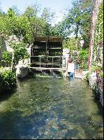 Eines von vielen Wasserraedern in Isle sur Sorgue 